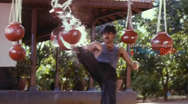 014 stunts telugu movies